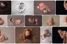 newborn photos with different positions like bum up, froggy,