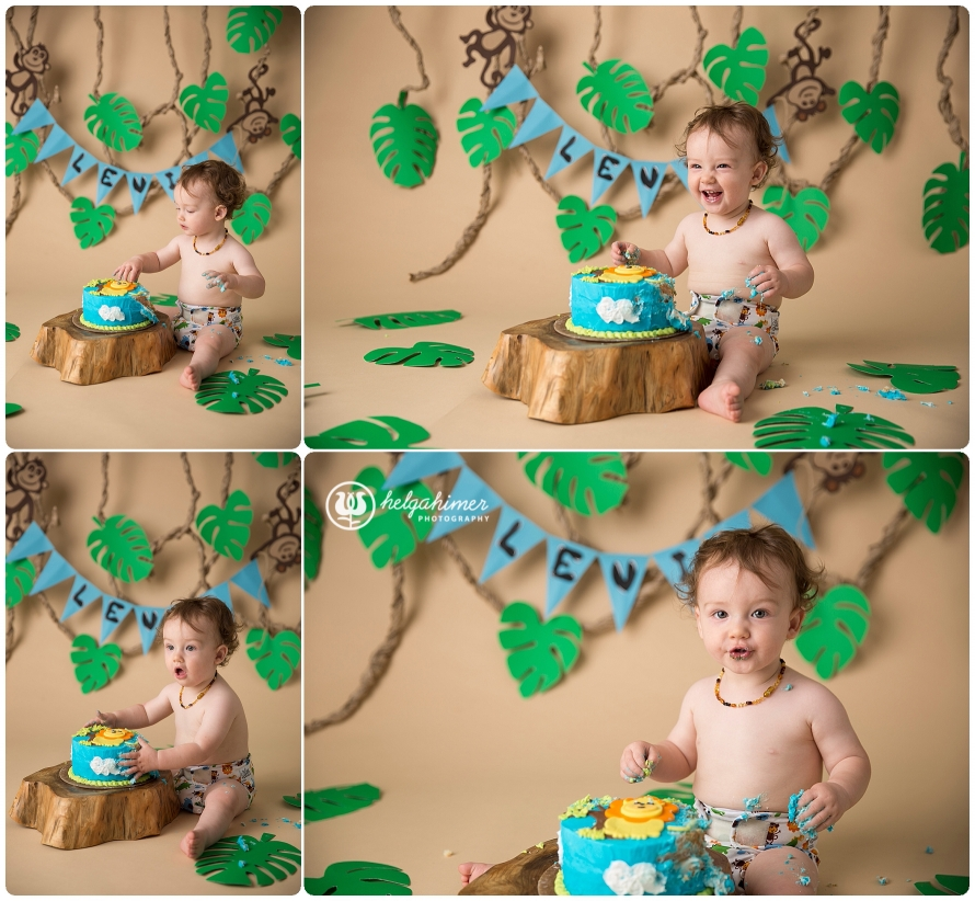 cake-smash-sudbury-infant-photographer-cakesmash-session-lion-leo-blue-oneyear-helgahimer-photography-baby-smashing-cake