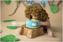 cake-smash-photography-session-photo-helgahimer-sudbury-ontario-baby-face-in-lion-cake-main-blue-jungle-theme